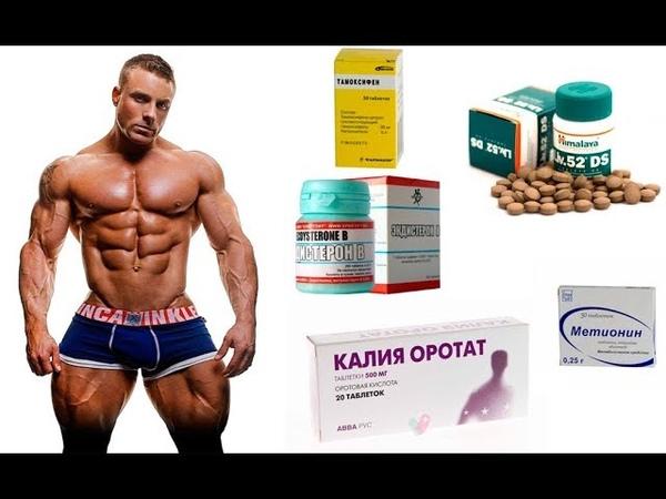 Стероиды ( тестостерон ) и бесплодие . Контрацепция и анаболики ( не КОКи )