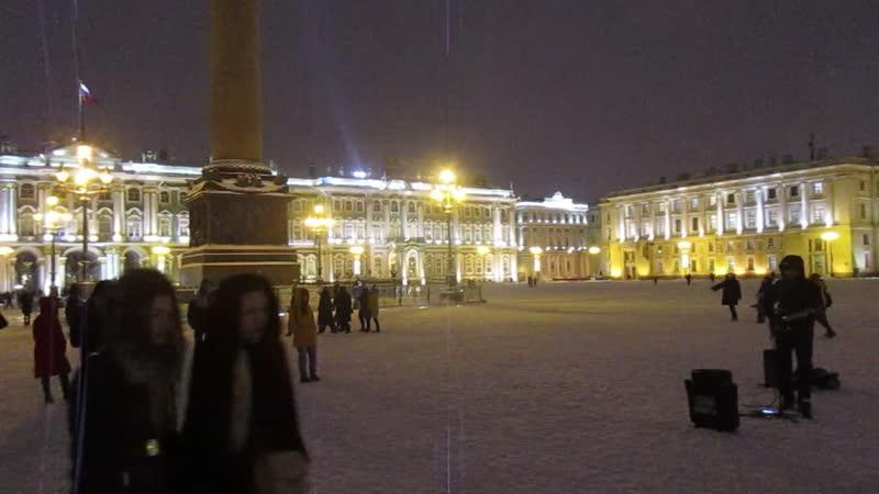 Новогодняя зима в Санкт Петербурге 2019 г год нечистоплотной свиньи вид 1334