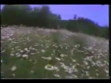 Vangelis &amp Caroline Lavelle - Voiсes 1995 - COME TO ME