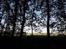 Дрёма - Дом среди полей (demo)