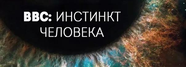Сериал BBC «Инстинкт человека»
