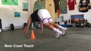 45 Locomotor, Agility And Strength Exercises with 1-5 Cones