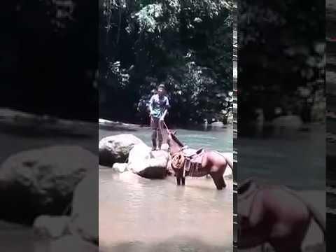 Vaquero en el río, 牛仔在河裡。, Ковбой в реке., Cowboy in the river.