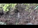 Блиндаж разорванный немец Безымянный солдат и куча опасных находок