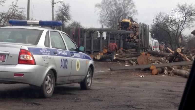 ДТП в Ружанах: бревна с лесовоза упали на 6-месячного ребенка, мать и бабушку