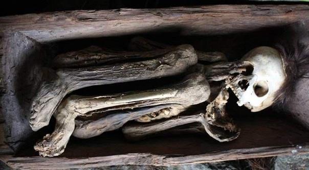О мистических огненных мумиях Кабаяна У многих из нас мумии ассоциируются с забальзамированными египетскими фараонами, у которых извлекали все органы, в частности даже вынимали через ноздри