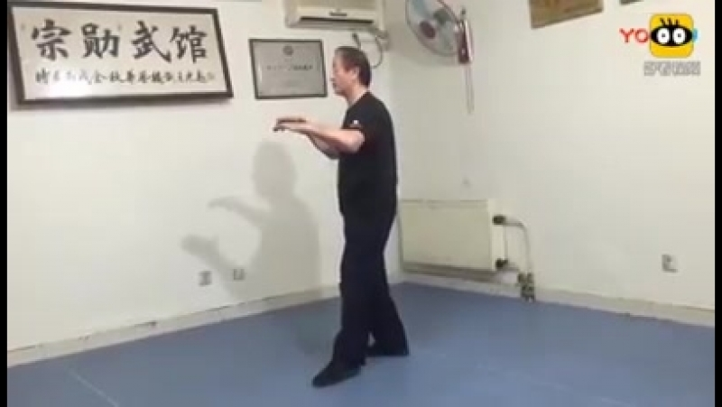 Yiquan mocabu practice: Yao Chengguang.