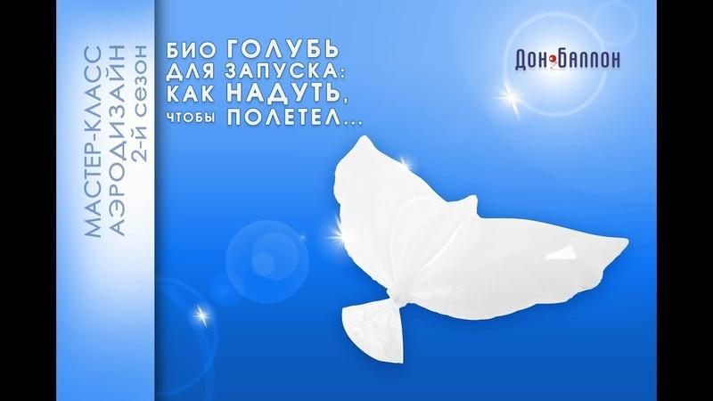 Обзор БИОшаров надувные голуби для запуска. Как надуть, чтобы взлетели?