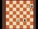 Обучение шахматам - пешечные окончания