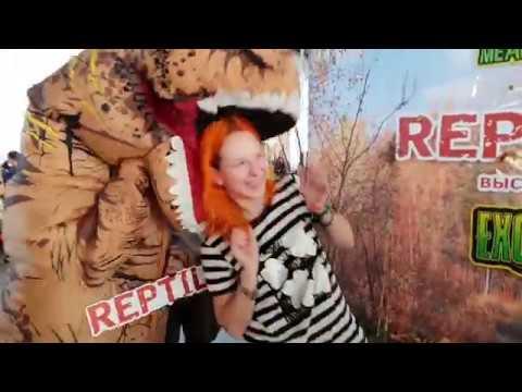 Спойлеры! Одни из самых ярких моментов Рептилиума осени 2018