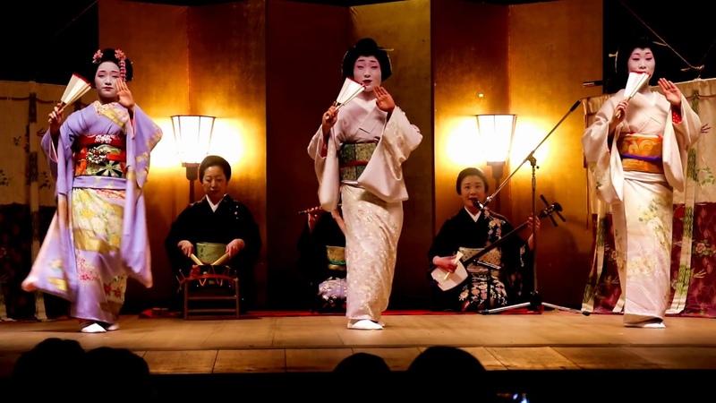 〈Tokyo Geisha 〉白塗り芸者半玉(舞妓)踊り 夜桜祭り 八王子子安神社