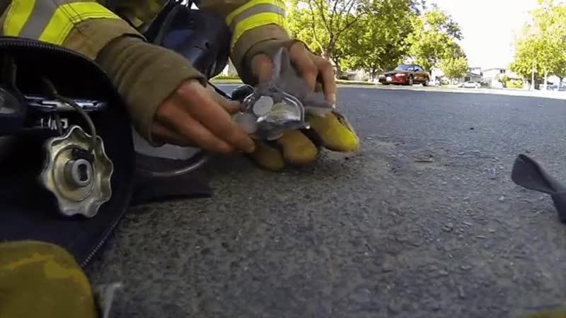 Firefighter Saves Kittens Life