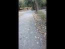 парк берлин