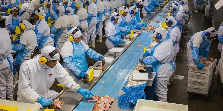 Что такое пищевая промышленность?