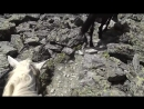 фильм Странные камни Раскрываем тайны Cибирских и Колымских мегалитов
