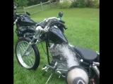 Когда не только ты любишь мыть свои мотоцикл