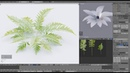 Blender2 79 Fern creation with your own textures