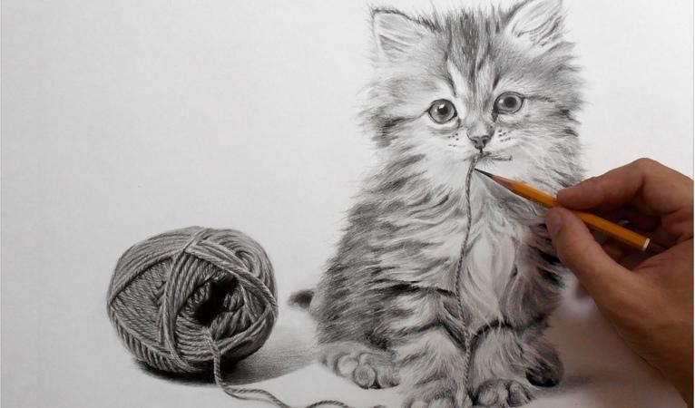 Рисунок кота карандашом ускоренное видео