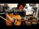 South Banat Autumn Bane Gluvakov 1971 Martin D18 Dean Markley PRO MAG