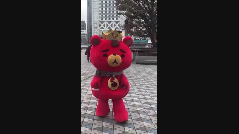 今朝のTBおはよう_ - 東方神起 - 明日コン - Tomorrow - TB - 東京ドーム12_11