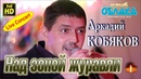 Full HD Live Concert Аркадий КОБЯКОВ Над зоной журавли Апрелевка 10 01 2015