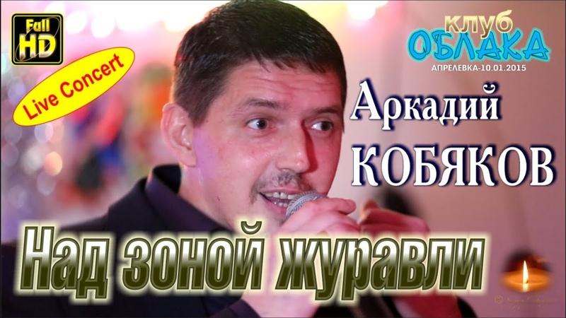 Full HD/ Live Concert/ Аркадий КОБЯКОВ - Над зоной журавли/ Апрелевка, 10.01.2015