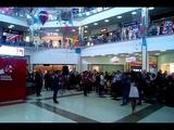 Макс Покровский закладывает именную звезду в торговом центре Краснодара