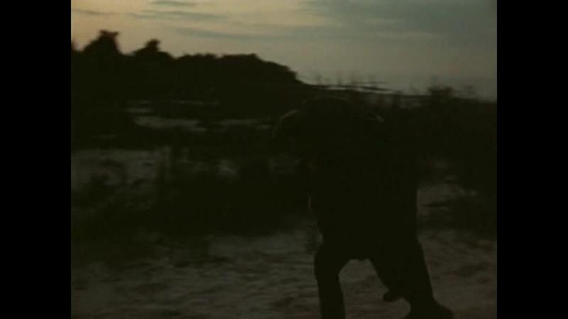 Долгая дорога в дюнах Часть 4