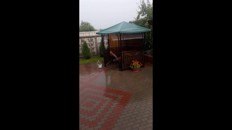 Долгожданный дождь....
