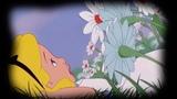 Helicon - White Rabbit (Jefferson Airplane cover)