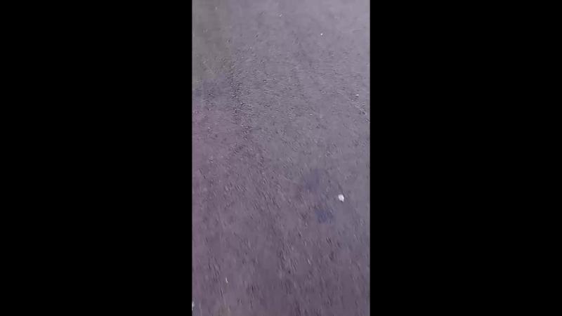 Аня Бердюгина - Live