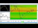 Traderinput Forex Live Trading EURUSD
