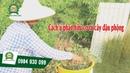 [Khomay vn] PHÂN BÓN HỮU CƠ || Cách làm phân vi sinh cho cây tại nhà