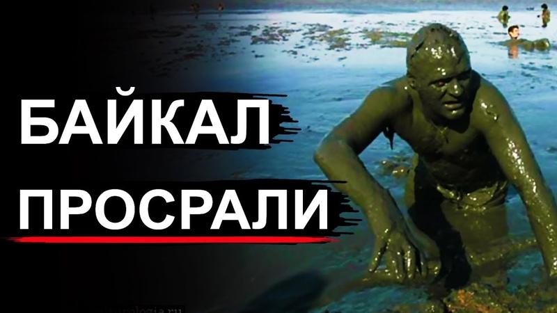 Байкал превращается в болото