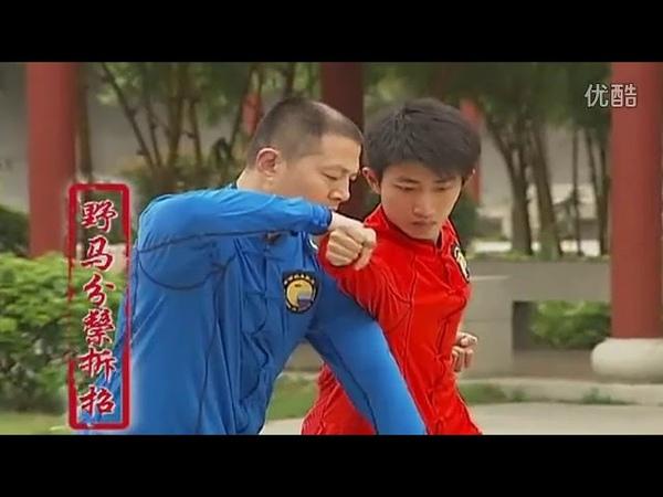 Китайская программа по Ян ши Тайцзи цюань 3 часть с 1 го по 6 ой дуань ПРИМЕНЕНИЕ
