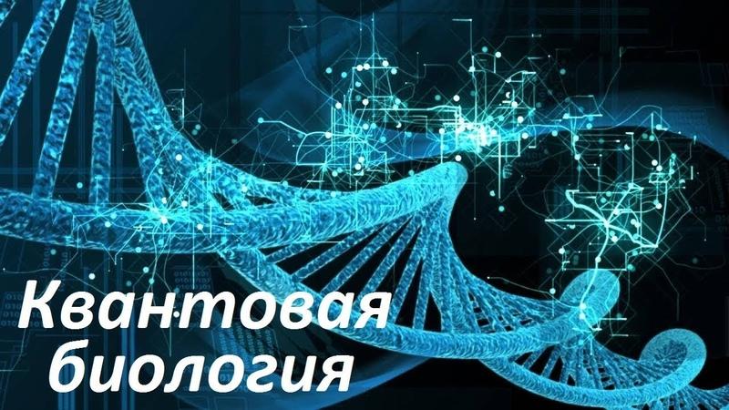 Квантовая биология   Квантовые гены живых организмов