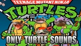 Teenage Mutant Ninja Turtles main theme but it's made with only turtle sounds