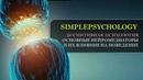 Когнитивная психология 15. Основные нейромедиаторы и их влияние на наше поведение.