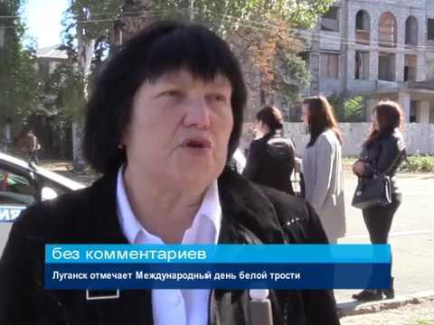 ГТРК ЛНР. Луганск отмечает Международный день белой трости