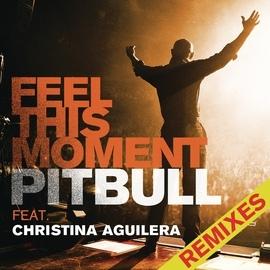 Pitbull альбом Feel This Moment Remixes