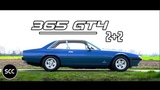 FERRARI 365 GT4 2+2 1974 - Full test drive in top gear - V12 Engine sound  SCC TV