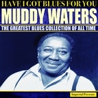 Muddy Waters альбом Muddy Waters (Have I Got Blues For You)