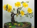 ABC TV _ How To Make Artificial Bonsai Tree - Craft Tutorial