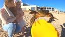 Поход на море И как мы ловили Краба Мы с поймали большого краба Кире Страшно Наш выходной на море