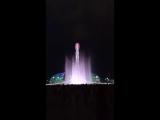 фонтан сочи под музыку Фредди Меркьюри