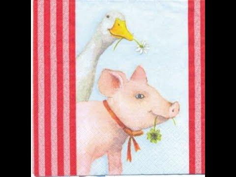 как предотвратить заболевания Рожи у свиней а также понос у поросят