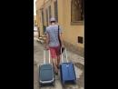 Asino porta bagagli