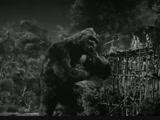 King Kong (King Kong, 1933) Merian C. Cooper, Ernest B. Schoedsack