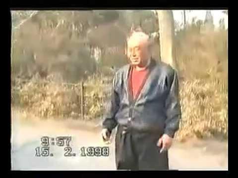 Чжао Фуцзян (Zhao Fujiang).Baji Xing Yi Da Cheng Quan