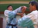 Hapkido Real Techniques (Korean Martial Art)